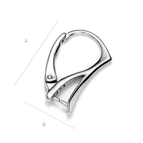 Kõrvarõnga toorik AG925